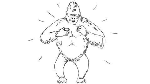 [alt video] Silverback Gorilla Beating Chest Drawing 2D Animation