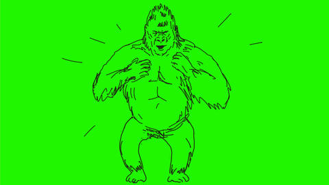 Silverback Gorilla Beating Chest Drawing 2D Animation Videos animados