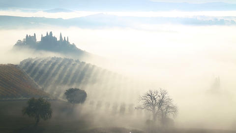 Morning Mist over the Fields and Vineyards Footage