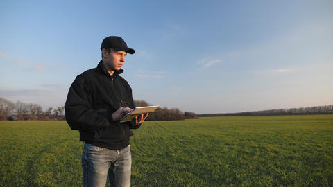 Farmer with portable tablet computer in a wheat field Live Action