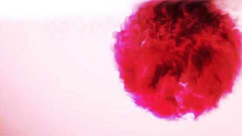 Standard Abstract Motion Background Animation