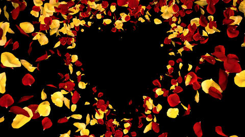 Flying Romantic yellow red Rose Flower Petals heart Alpha isolated Loop Animation