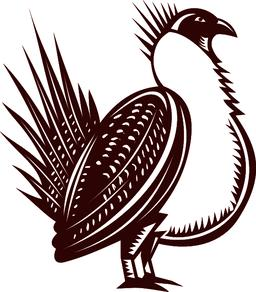 Sage Grouse Bird Woodcut Vector