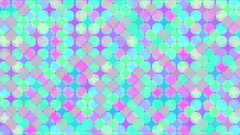 Mov86_maru_mosaic_loop 0