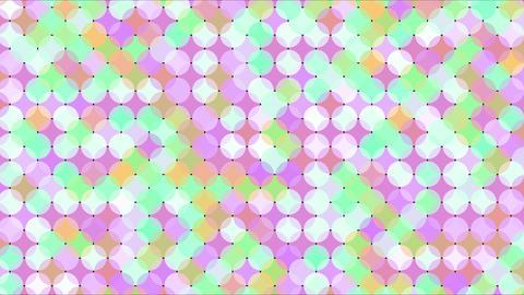 Mov86_maru_mosaic_loop 1