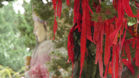 Red ribbon wrapped around branches.China Fortuna sculpture in temple.historical- Footage