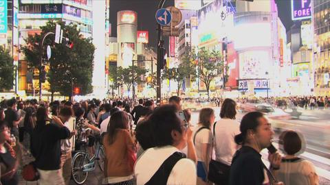 Shibuya Crossroad 01 Footage
