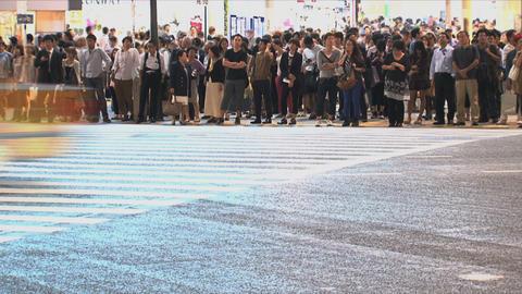 Shibuya Crossroad 05 Footage