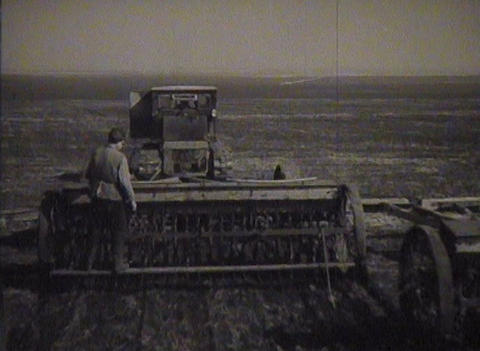 Gathering of grain crops in the USSR. Newsreel Stock Video Footage