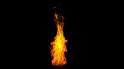 Fire Burning Stock Video Footage