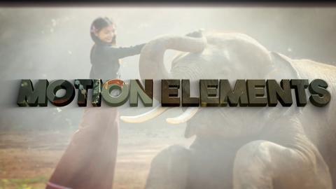 Elegant Slideshow Logo Plantilla de After Effects