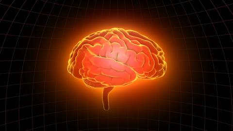 Brain 19 1 A1dD 4k Animation