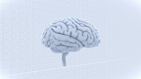 Brain 19 1 A1gW 4k Animation