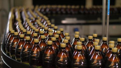 Brewing. Plastic bottles on conveyor belt Live Action