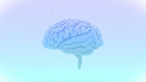 Brain 19 1 C1bW 4k Animation