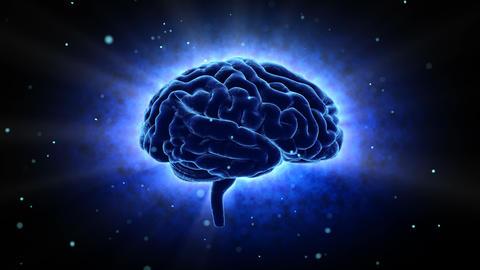 Brain 19 1 A1bB 4k Animation