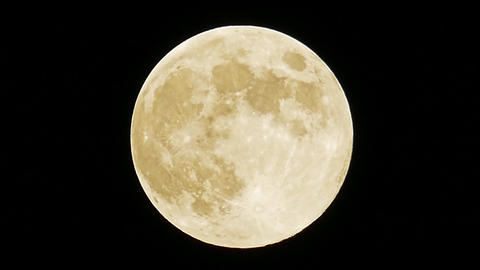 Full moon blue moon 2019 may 18 huge bird bug activity central europe pm 11 Live Action