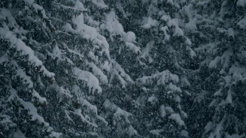 Winter Landscapes 0