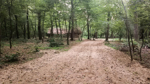 Dirt road through the woods, near a small cottage Photo