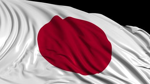 Japanese flag Videos animados
