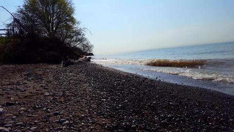Beach Landscapes 01 0