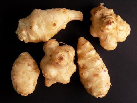Jerusalem artichoke Photo
