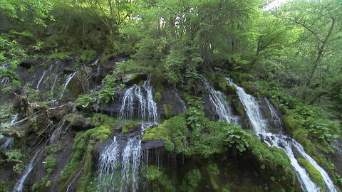 吐竜の滝01 Footage