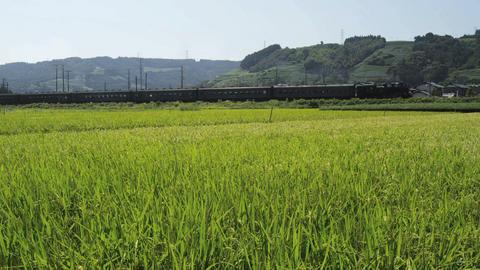 SL大井川鐵道07 Footage
