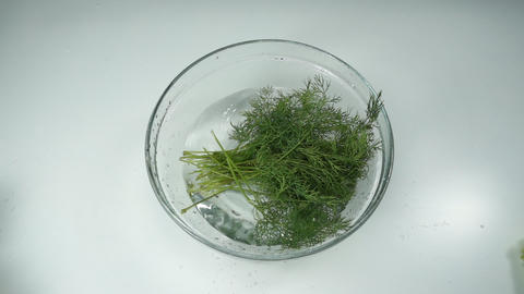 fresh green dill falls into the water. vegetarian foods. fresh and healthy Live Action