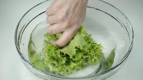 The female hand holds fresh lettuce leaves and washes the greens in clean water Footage
