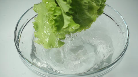 [alt video] The female hand holds fresh lettuce leaves and washes the...