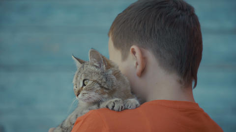 young guy stroking a cat Footage