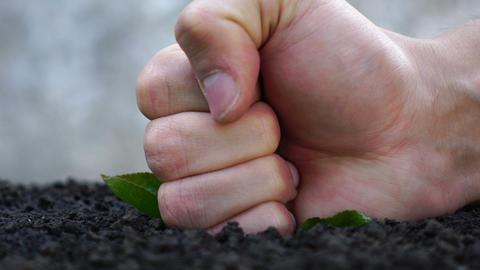 struggle against gardening. destruction of the ecosystem Footage