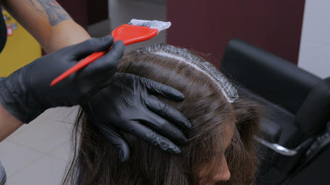 Professional hairdresser coloring hair of woman client at studio Footage