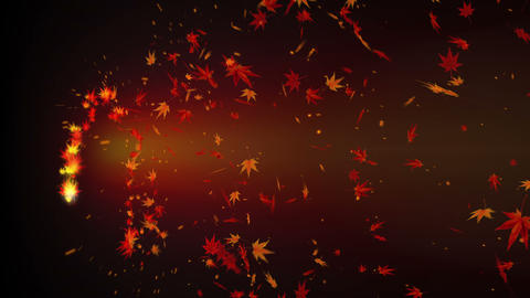 Spin of autumn leaves, Abstract background Animation