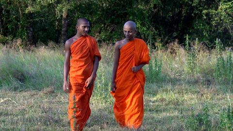 Haberna, Sri Lanka- 2019-03-22 - Two Young Monks Talk As They Walk Towards Footage