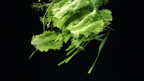 green vegetables fall in slow motion. ingredients of vegetarian salad. cooking tasty and healthy Live Action