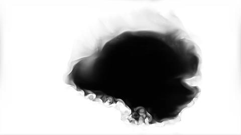 Bytes Black ink spreading on white background transition Footage