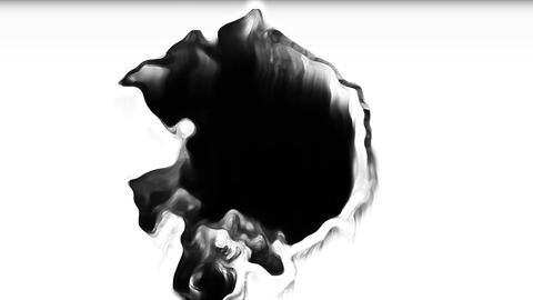 Tutor Organic Ink Bleed Background Transition Animation