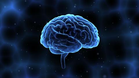 Brain Head 19 1 A1bC 4k Animation