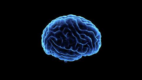 Brain Head 19 1 B1bA1 4k Animation