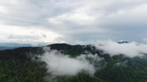Clouds over rain forest jungle. Aerial view of rainforest Live Action
