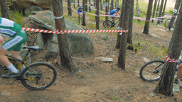 group of young mountain bikers going through forest Footage