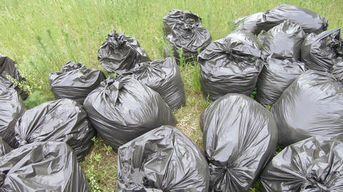 Garbage bags on the lawn Live Action