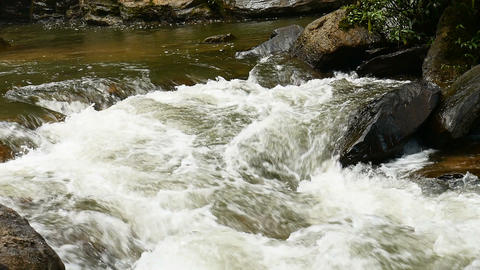 Water stream flowing on rock in forest Footage