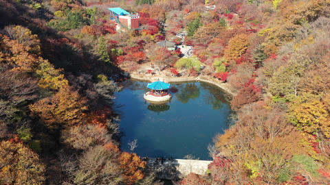 Aerial view of Naejangsan National Park on the most beautiful day of autumn,The most beautiful Footage