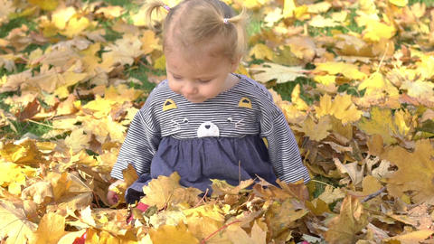 Slow Motion Little Girl In Autumn Park. Portrait Of A Baby In Autumn Park Live Action
