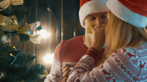 Slow Motion Young Attractive Happy Couple Decorating The Christmas Tree Footage