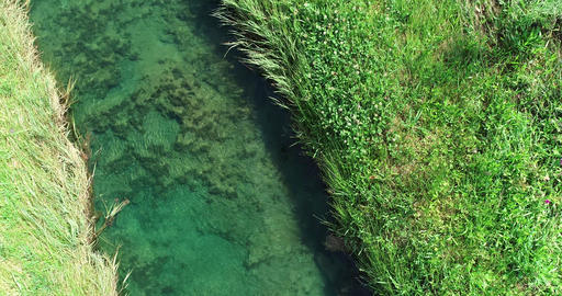 Aerial flight over creek in Texas Live Action