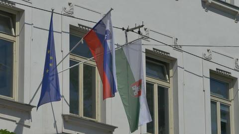Slovenia and European Flag on Building Footage